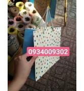 Túi giấy đựng quà tặng giá rẻ