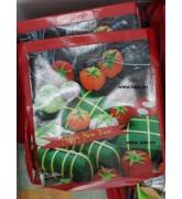 Túi nhựa in hình bánh trưng