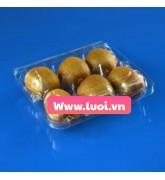 Hộp nhựa đựng kiwi giá rẻ