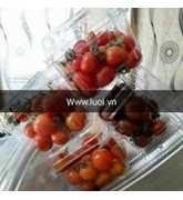 Hộp nhựa đựng cà chua giá rẻ