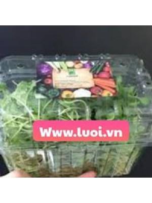 Hộp nhựa đựng rau giá rẻ