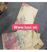 Túi giấy có sẵn 02