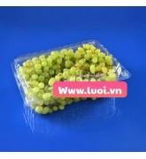 Hộp nhựa đựng trái cây giá rẻ nhất thị trường