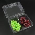 Hộp nhựa 2 ngăn đựng trái cây giá rẻ