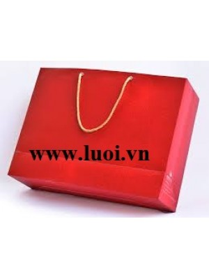 Túi giấy ngang đựng quà tết