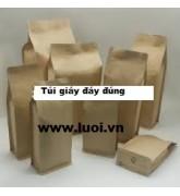 Túi giấy đáy đứng 01